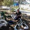 юрий, 49, г.Нововаршавка